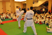 8°Stage Regionale Karate Shotokan
